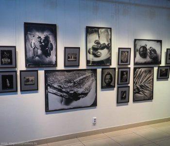Выставка современной арт-фотографии «Амбротипия. Алексей Серебряков»