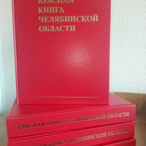 Выставка «Красная книга: современная драма»