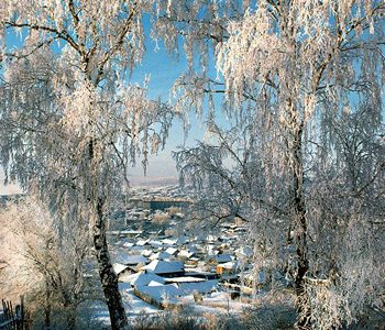 Выставка «Уральская зима»